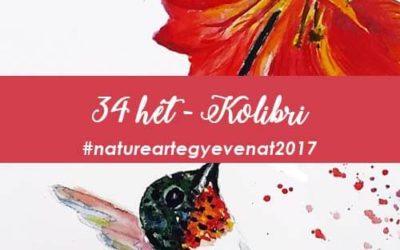 2017 34 hét KOLIBRI-natureart egy éven át