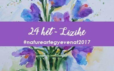 2017 24 hét LIZIKE -natureart egy éven át