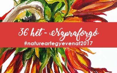 2017 36 hét NAPRAFORGÓ-natureart egy éven át