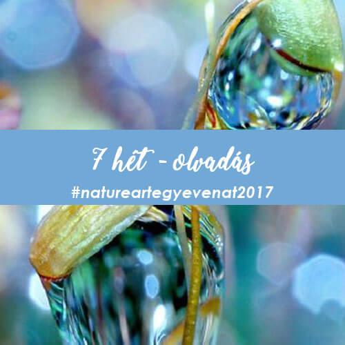 2017. 7 hét: OLVADÁS -natureart egy éven át-