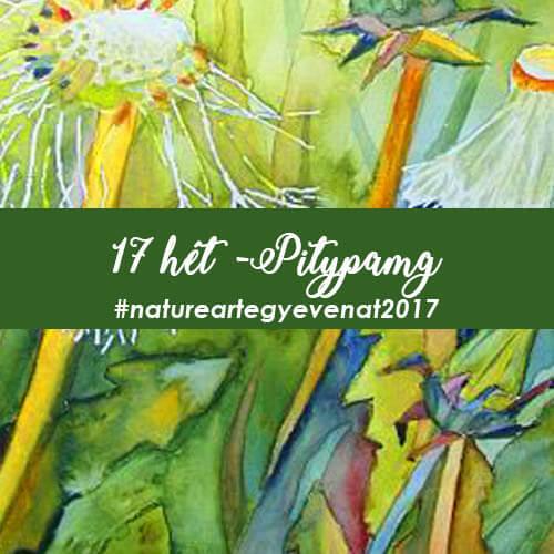 2017 17 hét PITYPANG -natureart egy éven át