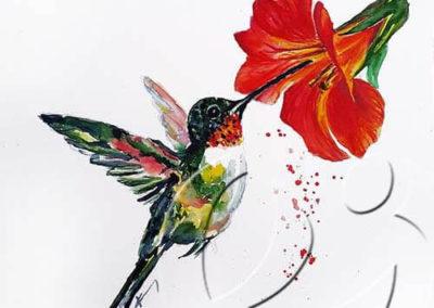 017200hummingbird sw