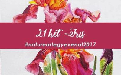 2017 21 hét IRIS -natureart egy éven át