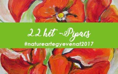2017 22 hét PIPACS -natureart egy éven át