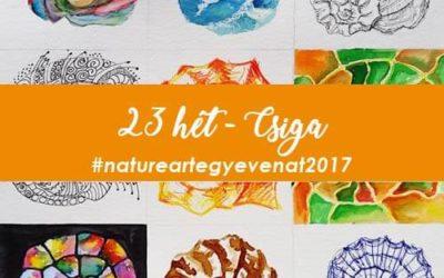 2017 23 hét CSIGA -natureart egy éven át