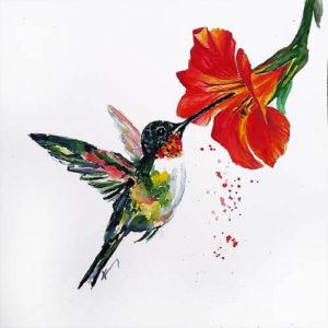 017200 hummingbird s