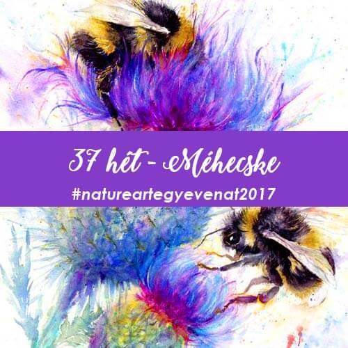 37 bee