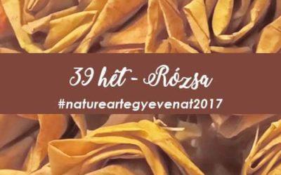2017 39 hét RÓZSA-natureart egy éven át
