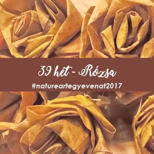 39 heti kép rózsa