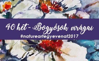 2017 40 hét BOGYÓK-natureart egy éven át