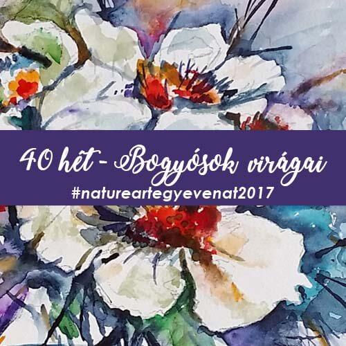 40 hét vogíósok virágai
