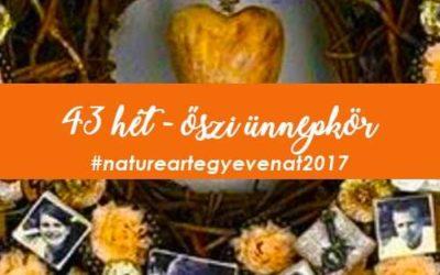 2017 43 hét ŐSZI ÜNNEPKÖR-natureart egy éven át