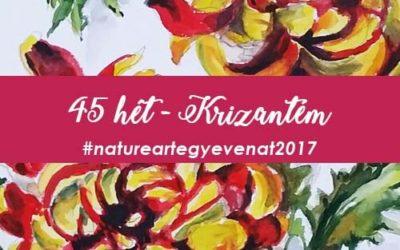 2017 45 hét KRIZANTÉM-natureart egy éven át