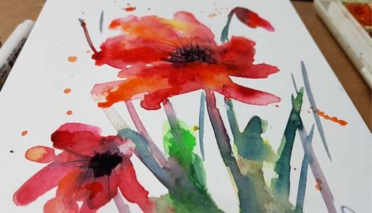 poppies 1 videokepe