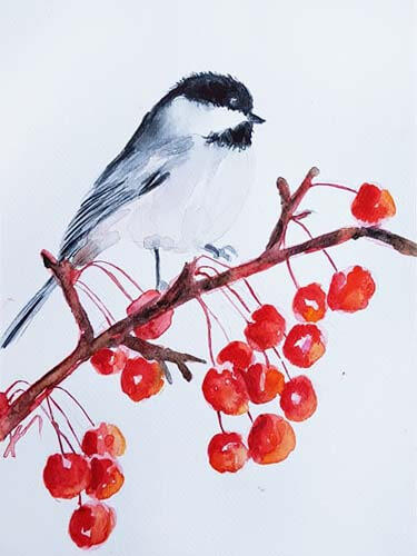 019336 chickadee and berries