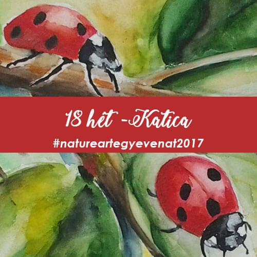 2017 18 hét KATICA -natureart egy éven át