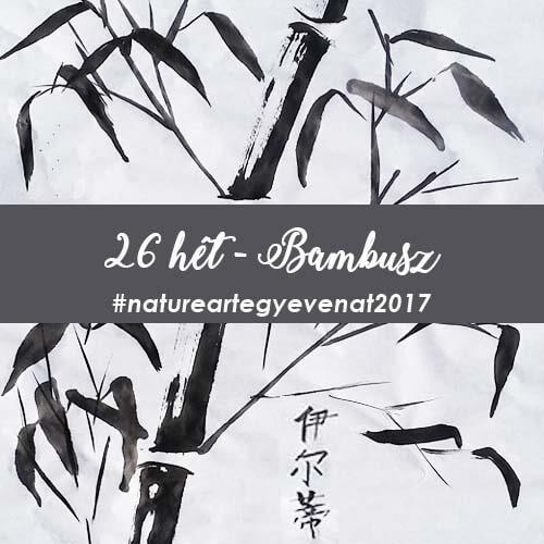 2017 26 hét BAMBUSZ -natureart egy éven át