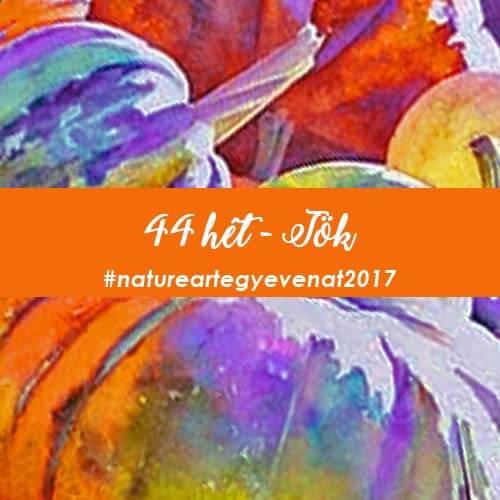 2017 44 hét TÖK-natureart egy éven át