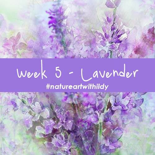 NATUREART SUMMER week 5 LAVENDER