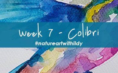 NATUREART SUMMER week 7 COLIBRI